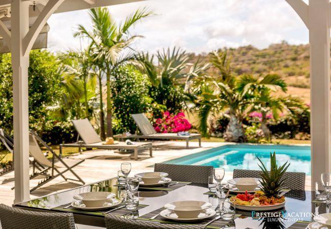 Villa in Le Vauclin - Silver Palm